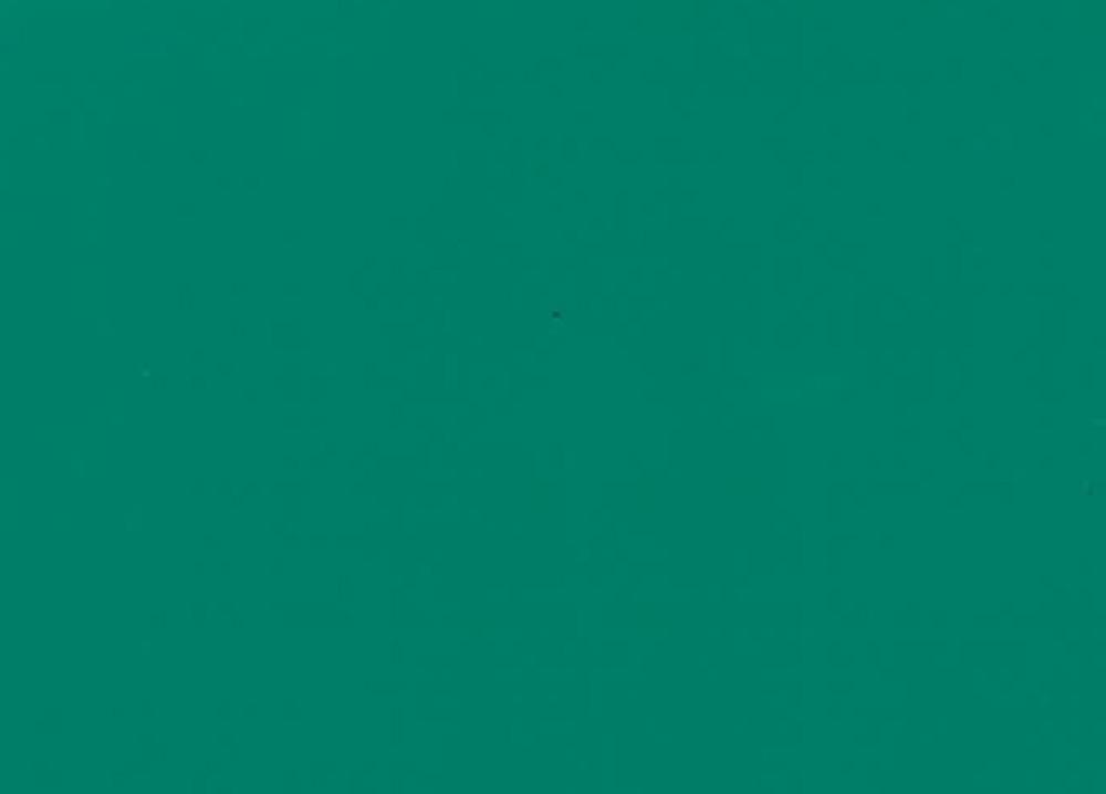 Toptarp® Ripstop 205cm Light Green